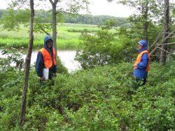 Monitoring an easement on Nanjemoy Creek